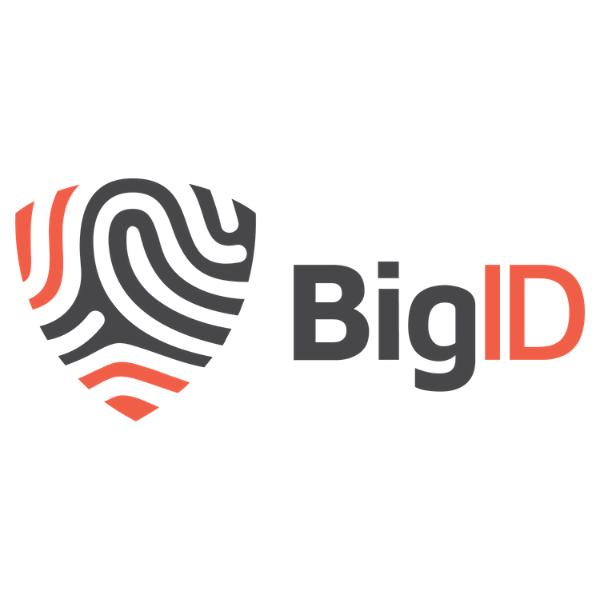 bigid 1